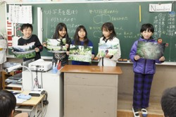 平作小学校5年生