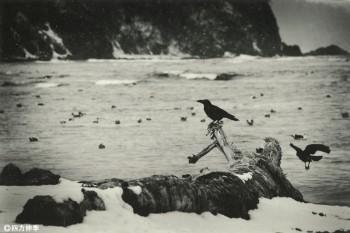 「虎落笛の啼く海」四方 伸季