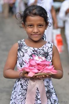 蓮の花びらの奉げものを持つ少女。聖地キャンディ。