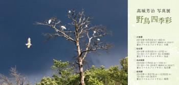 高城芳治「~野鳥のいる風景~野鳥四季彩 展」