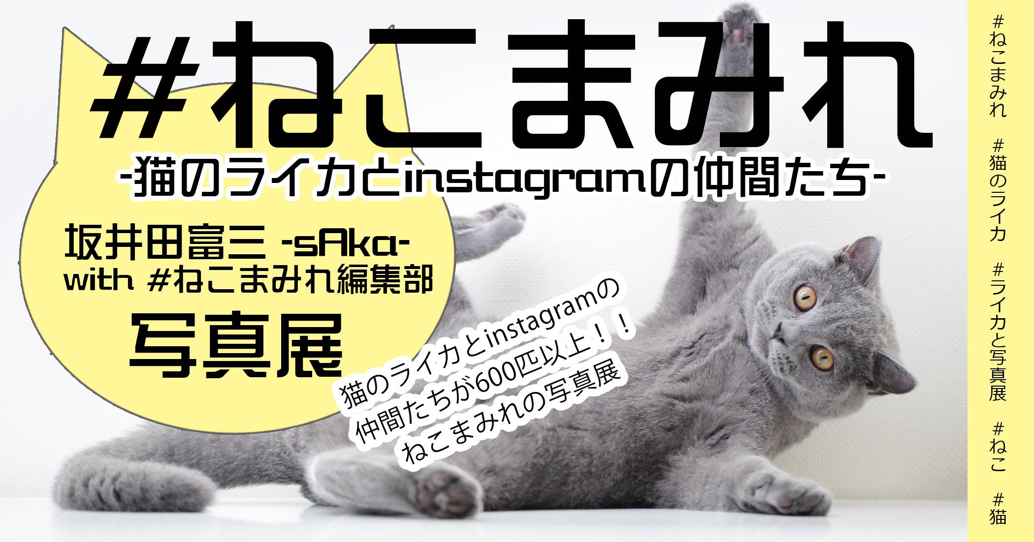 坂井田富三写真展「#ねこまみれ -猫のライカとinstagramの仲間たち- 」